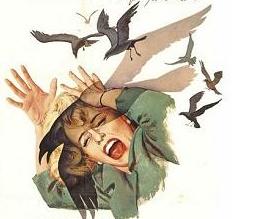 Directorial Flap Over Birds Remake