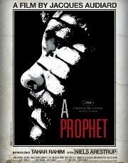 nov a prophet