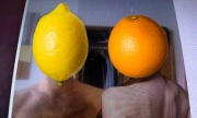 Orange(Wednesday)s and Lemons #1