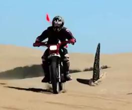 Sand Sharks trailer released