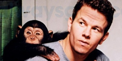 Cheat Sheet: Mark Wahlberg