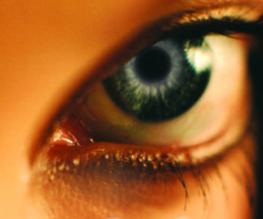 First teaser trailer for Stephenie Meyer's The Host