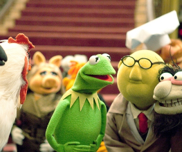 Jason Segel may return for Muppet Cameo