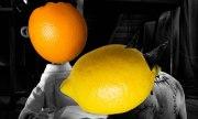 Orange(Wednesday)s and Lemons #89