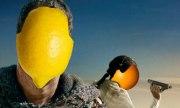 Orange(Wednesday)s and Lemons #103