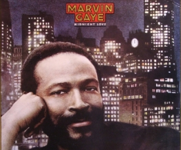 Marvin Gaye biopic issues