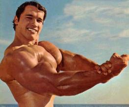 Arnold Schwarzenegger reveals Terminator 5 role