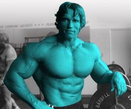 Fox denies Arnie/Avatar rumours